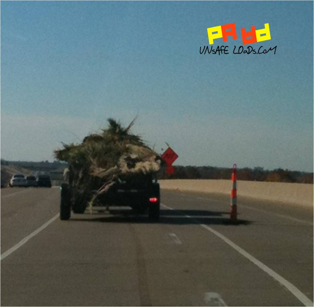 Unsafe load of hay on the freeway
